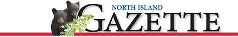 NI-Gazette-Masthead-Bear-Cubs475x75